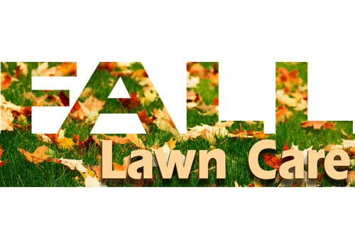 Care Tips To Help Put Your Lawn To Bed For Winter